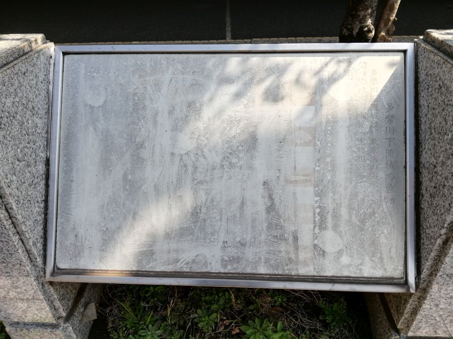 宮本台緑地 説明