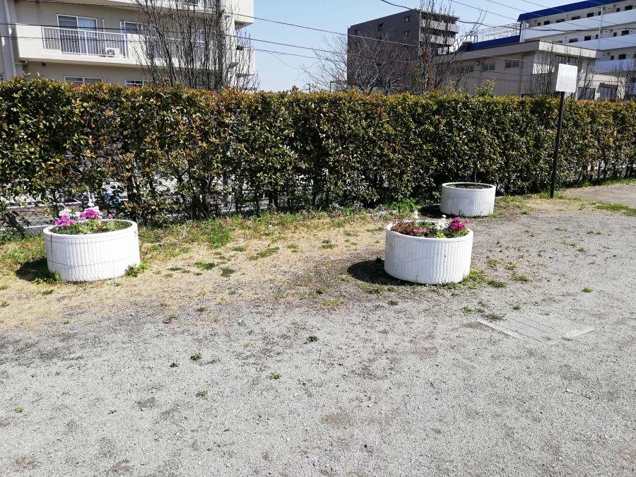 南三堤公園 花壇