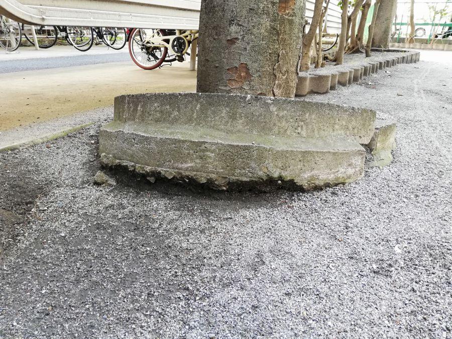 たいよう児童公園 コンクリート