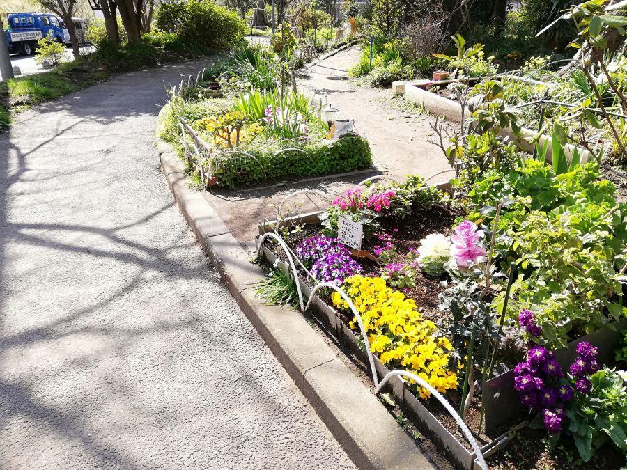 南六郷公園 花壇