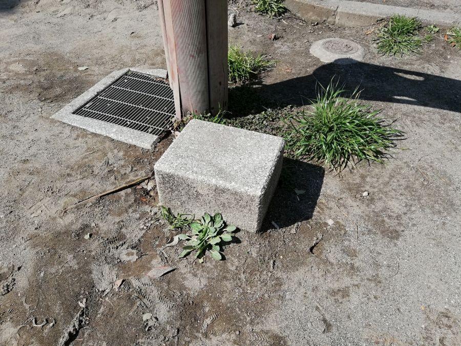 南六郷公園 水道の踏み台