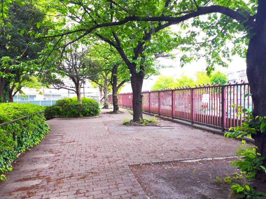 大田区 東糀谷一丁目呑川公園 並木道