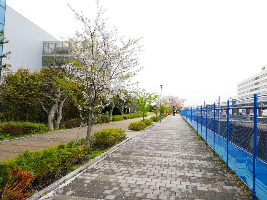あさひ海老取川公園