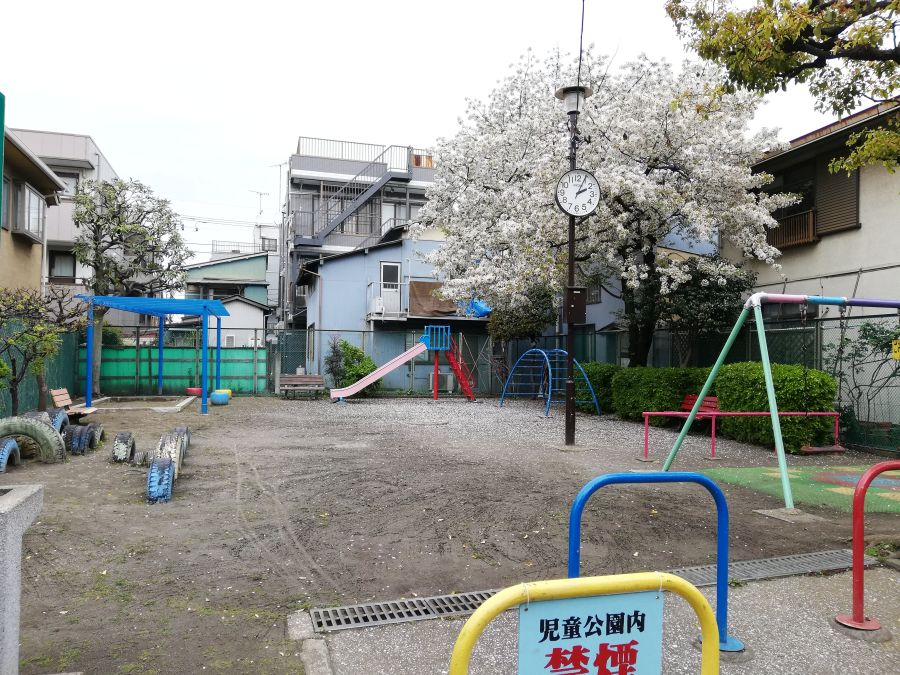 前河原児童公園 桜の木