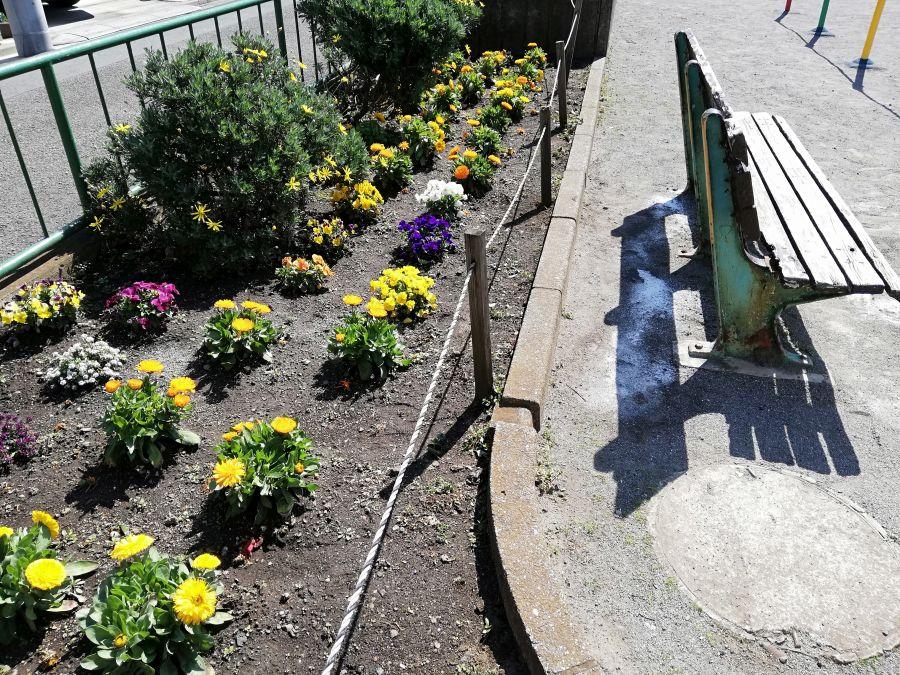 本羽田本町公園 花壇
