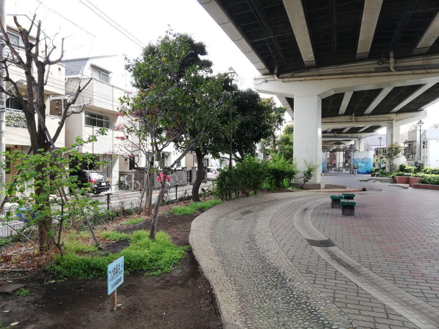 大田区 羽田西前公園 流れる川