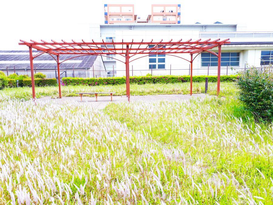 大田区 海老取川公園 ベンチ