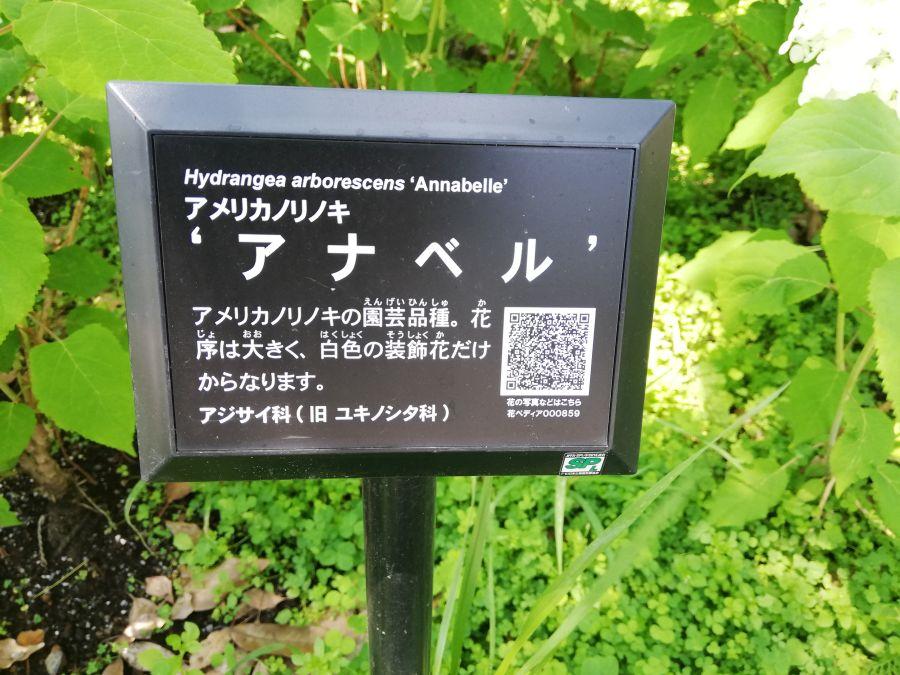 下丸子多摩川公園